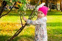 Retrato do outono da criança bonita Menina feliz com as folhas no parque na queda fotos de stock royalty free