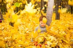 Retrato do outono da criança bonita Rapaz pequeno feliz com as folhas no parque na queda foto de stock royalty free
