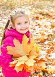 Retrato do outono da menina de sorriso bonito com folhas de bordo Fotografia de Stock