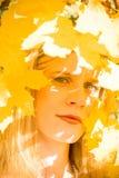 Retrato do outono da mulher nova foto de stock royalty free