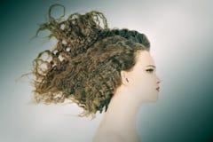 Retrato do perfil da mulher com cabelo encaracolado foto de stock royalty free
