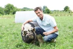 Retrato do porco de In Field With do fazendeiro Fotos de Stock Royalty Free