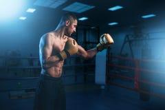 Retrato do pugilista muscular em luvas pretas Imagens de Stock