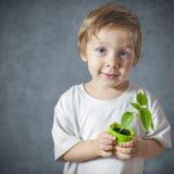 Retrato do rapaz pequeno engraçado com plantas da janela Imagem de Stock Royalty Free