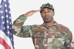 Retrato do soldado dos E.U. Marine Corps que sauda a bandeira americana sobre o fundo cinzento Imagem de Stock Royalty Free