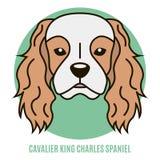 Retrato do Spaniel de rei Charles descuidado Ilustração do vetor mim Fotos de Stock