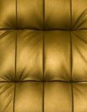 Retrato do upholstery do couro genuíno Imagens de Stock