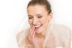 Retrato do vestido e do véu bonitos de casamento da noiva Imagem de Stock