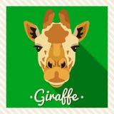 Retrato do vetor de um girafa Retratos simétricos dos animais Ilustração do vetor, cartão, cartaz ícone Cara animal Fotos de Stock