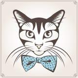 Retrato do vetor do gato Fotografia de Stock