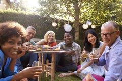 Retrato dos amigos maduros que apreciam bebidas no quintal foto de stock royalty free