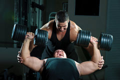 Retrato dos bodybuilders foto de stock