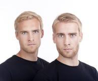 Retrato dos irmãos gémeos Fotos de Stock Royalty Free