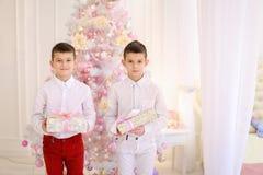 Retrato dos meninos gêmeos bonitos que sorriem e levantam o suporte no deco inativo Fotos de Stock