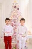 Retrato dos meninos gêmeos bonitos que sorriem e levantam o suporte no deco inativo Imagem de Stock