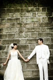 retrato dos pares do casamento Imagem de Stock