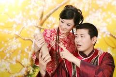 Retrato dos pares do casamento Imagem de Stock Royalty Free
