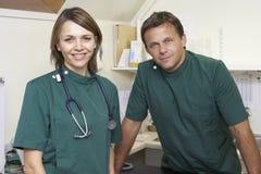 Retrato dos veterinários masculinos e fêmeas na cirurgia Imagem de Stock