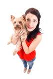 Retrato engraçado da jovem mulher que guarda o terri de yorkshire do cão pequeno Fotos de Stock Royalty Free