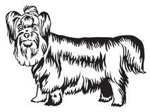Retrato ereto decorativo do vetor do yorkshire terrier Foto de Stock