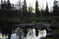 Retrato escénico de los árboles reflejados en agua Foto de archivo libre de regalías
