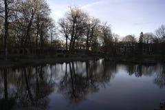 Retrato escénico de los árboles reflejados en agua Fotos de archivo
