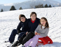 Retrato europeo de la familia con tres hermanos sonrientes fotografía de archivo