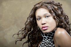 Retrato fêmea Foto de Stock