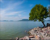 Retrato feérico do lago Balaton Imagem de Stock