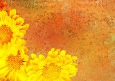 Retrato floral estilizado do vintage Fotografia de Stock