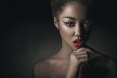 Retrato glamoroso Imagens de Stock