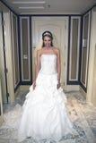 Retrato hermoso de la novia Foto de archivo libre de regalías