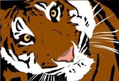 Retrato hermoso grande del primer del tigre stock de ilustración