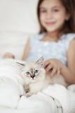 Criança e gatinho imagens de stock royalty free