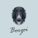 Retrato ilustrado vector del perro ruso del galgo ruso stock de ilustración