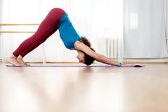 Retrato integral de la mujer que hace el complejo de la yoga del saludo del sol Imagen de archivo libre de regalías