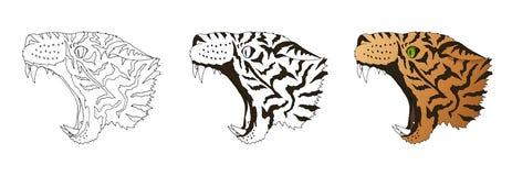 Retrato irritado do leopardo do vetor A cabeça predadora do tigre coloriu e rabisca isolado ilustração stock