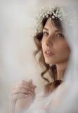 Retrato lindo blando hermoso de la muchacha Imagen de archivo