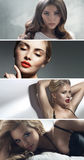 Retrato múltiplo de quatro senhoras atrativas fotos de stock royalty free