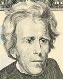 Retrato macro de Jackson Imágenes de archivo libres de regalías