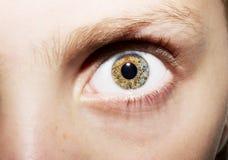 Retrato macro dos olhos das moças Fotos de Stock