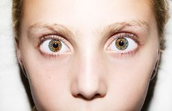 Retrato macro dos olhos das moças Fotografia de Stock