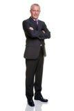 Retrato maduro do homem de negócios foto de stock royalty free