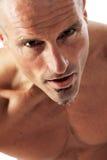Retrato masculino Imagenes de archivo