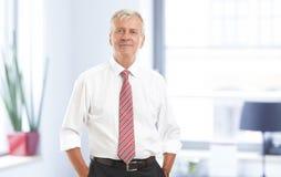 Retrato mayor del hombre de negocios Imagen de archivo libre de regalías