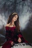 Retrato medieval da rainha fotografia de stock