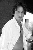 Retrato modelo masculino considerável Fotos de Stock