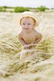 Retrato no feather-grass Foto de Stock Royalty Free