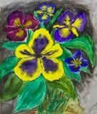 Retrato pintado mão, viola tricolor Foto de Stock Royalty Free