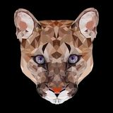 Retrato poligonal do puma do gato grande Fotografia de Stock